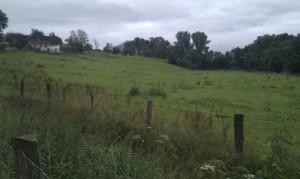 Bauernhof kurz vor Ketten Thiele